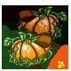 Pumpkin Slippers